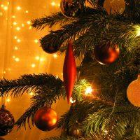 christmas xmas festive