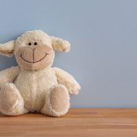 toy shop teddy bear kids child children