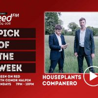 Pick of the Week: HousePlants - 'Companero' - Green on Red