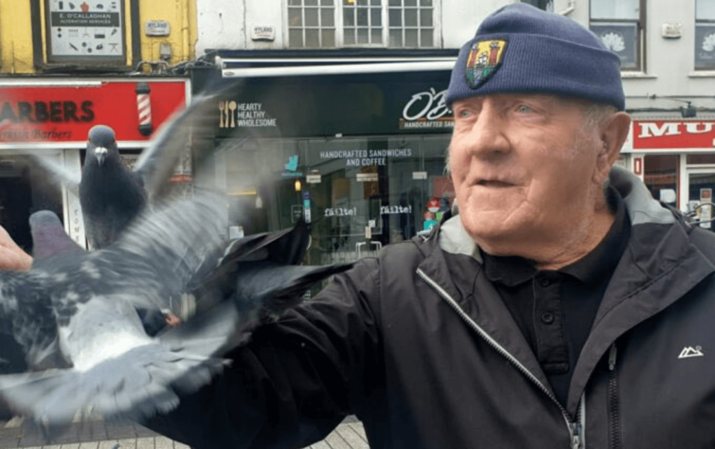 birdman cork daunt square frankie flaherty